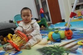 一周岁宝宝的发育特点(转)