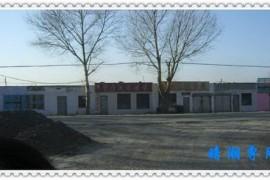 母校最后的风景(1)--大庆石油学院安达校区